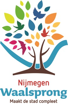 NijmegenWaalsprong